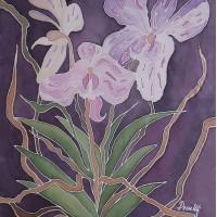 Orchid, 40 / 50 cm, Circulation: Unique;